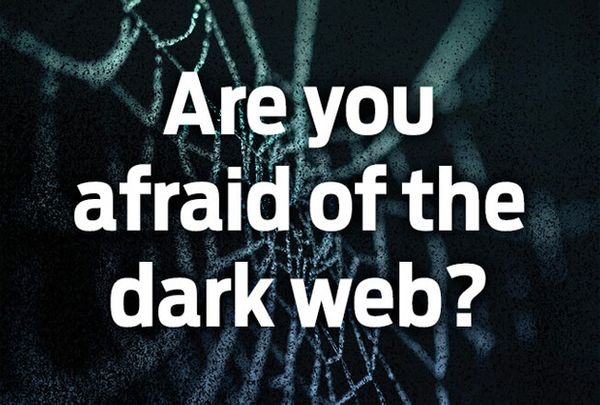 Digging into the dark web